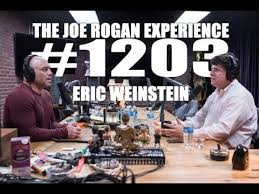 The Joe Rogan Experience #1203 - Eric Weinstein - Podcast Notes