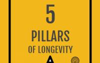 5 PILLARS OF LONGEVITY
