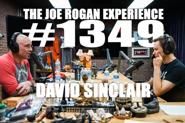 David Sinclair Ph D The Joe Rogan Experience 1349 Podcast Notes